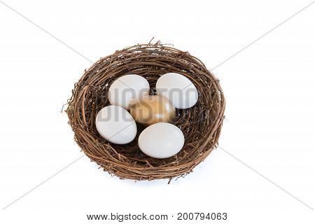 Single Golden Egg in Nest with Several Regular White Eggs on White Background