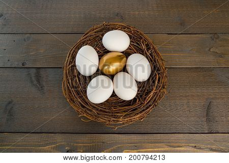 Single Golden Egg in Nest with Several Regular White Eggs on Wood Background