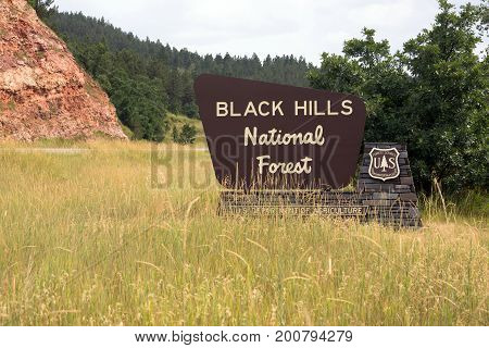 Viewer enters the Black Hills National Forest
