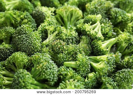Many fresh green broccoli sprouts as background