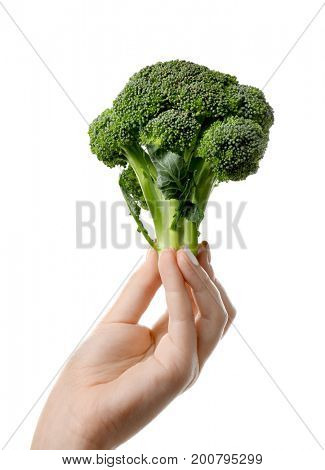 Fresh green broccoli in hand isolated on white