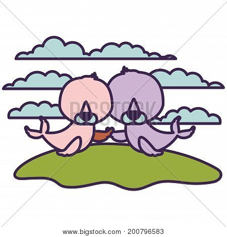 white background with light color scene couple faceless seals aquatic animals in grass vector illustration