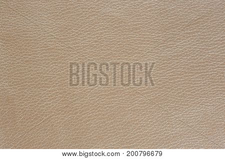 Beige Glossy Artificial Leather Background Texture