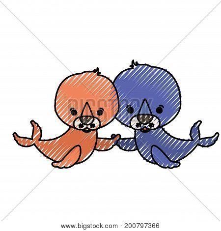 color crayon silhouette caricature couple cute animal seals aquatic vector illustration