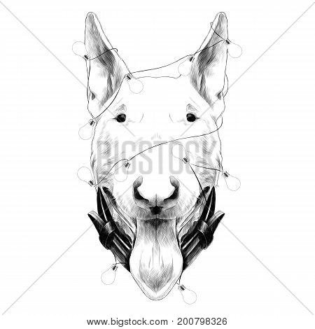 dog head breed bull Terrier sketch vector graphics monochrome new year's holiday with lights