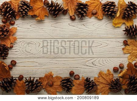 Flat lay frame of autumn leaves cones and nuts on a wooden background. Selective focus.