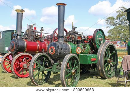 Steam traction engines standing in a field