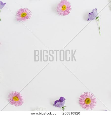 Floral frame with space for text made of white and pink chamomile daisy flowers green leaves on white background. Flat lay top view. Daisy background. Mock up frame of flower buds.