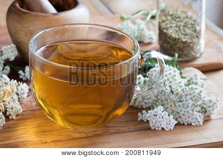 A cup of yarrow tea with fresh yarrow on a wooden table