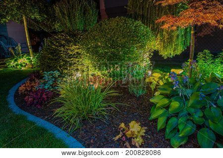 Elegant Backyard Garden Led Lights Illumination. Lighting in a Garden.