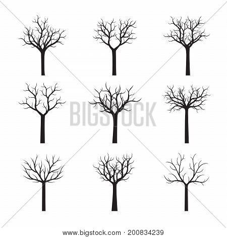 Set of black naked Trees. Vector Illustration.