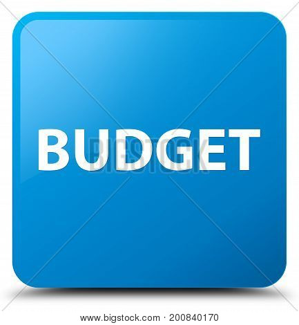 Budget Cyan Blue Square Button