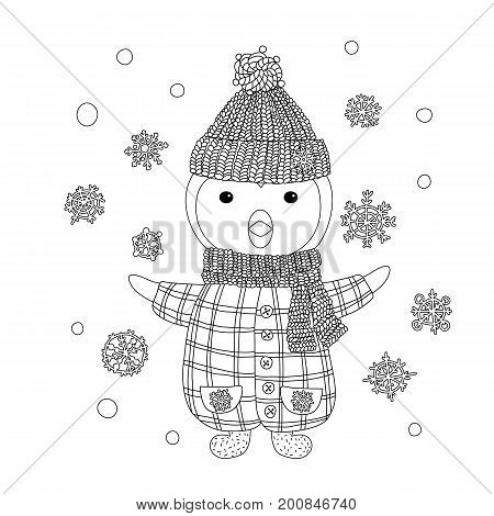 Coloring for children and adults. Nice penguin in a knitted hat. Black and white contour drawing. Children's character