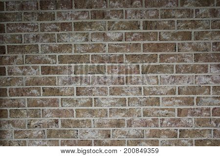 Light brown brick wall of the house