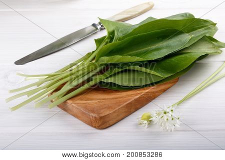 Bunch of ramson leaves. Wild garlic on white wooden table.