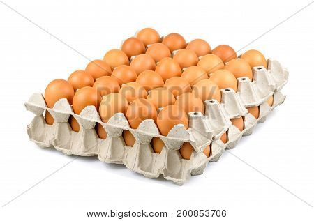 Full tray of freshly laid free range organic eggs Row of eggs in box eggs in cartons