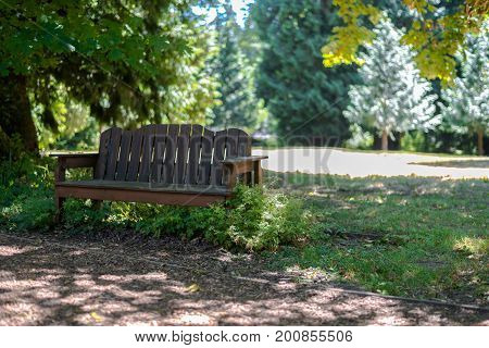 Wooden bench next to a path in the park in dappled sunlight
