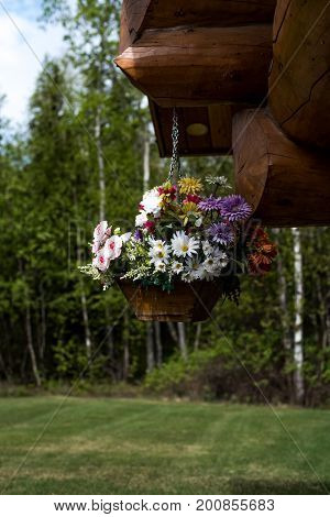 Flower basket full of flowers hanging from front porch of log cabin
