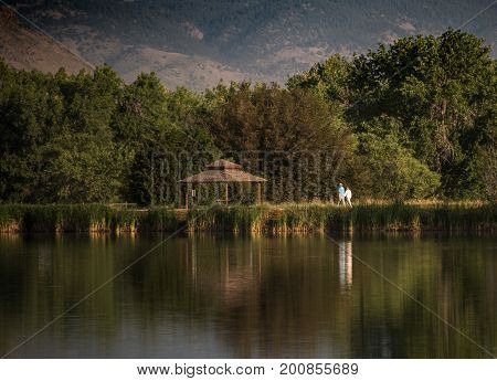 An older couple taking a morning walk around a lake with reflection poster