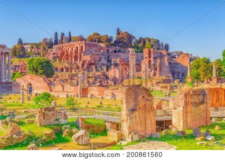 Archaeological And Historical Objects In Rome, United By The Name - Roman Forum. View On Palatine Hi