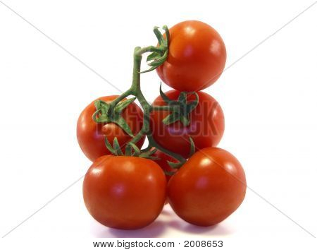 Vertical Tomatoes