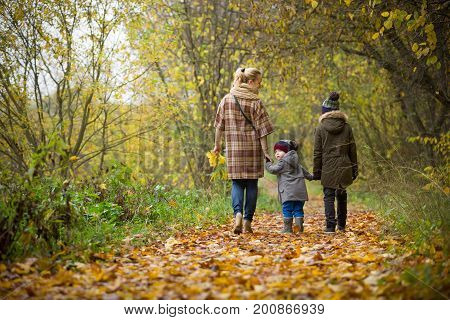 Back view on mother with two children walking in the autumn park. Woman with toddler and kid boys enjoying outdoor activities. Family and lifestyle concept