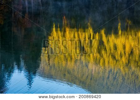 Lake Surface Reflecting Spruce Forest At Sunrise