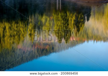 Lake Surface Reflecting Spruce Forest On Hillside