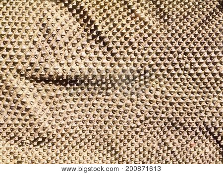 Folded Genuine Snake Skin Leather For Texture And Background.