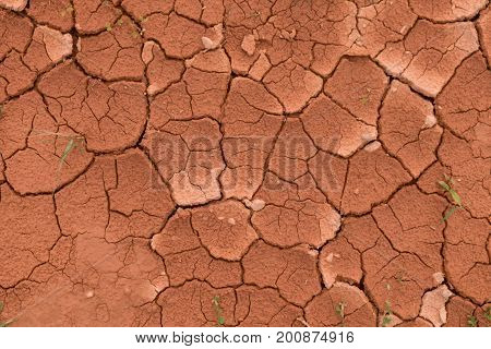 The surface of a grungy dry cracking parched earth for the textural background. Cracked mud pattern with Soil in cracks because of environment drought.