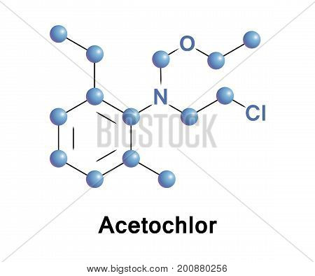 Acetochlor is an herbicide It is a member of the class of herbicides known as chloroacetanilides