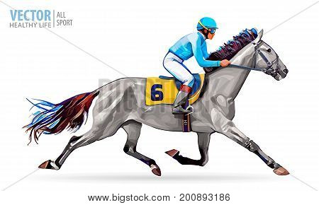 Jockey on horse. Champion. Horse racing. Hippodrome. Racetrack. Jump racetrack. Horse riding. Racing horse coming first to finish line. Vector. Illustration