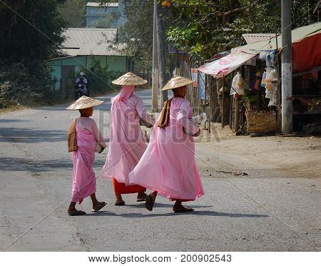 Buddhist Nuns Walking For Morning Alms