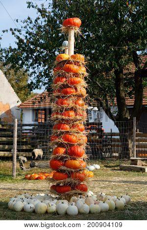 Ripe Autumn Pumpkins Arranged On Totem In Farm
