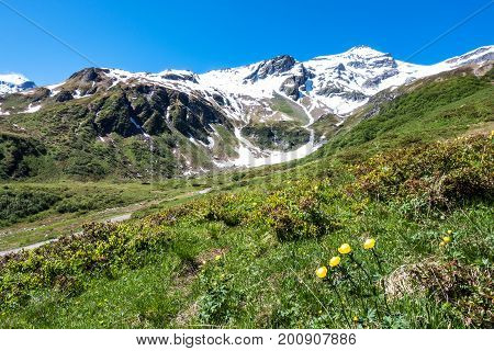 Snow covered mountains in summer mountain peaks in Hohe Tauern Range poster