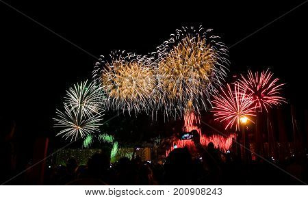 Beautiful colorful fireworks in the night sky. Spectacular show.
