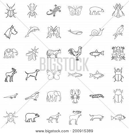 Wild life icons set. Outline style of 36 wild life vector icons for web isolated on white background