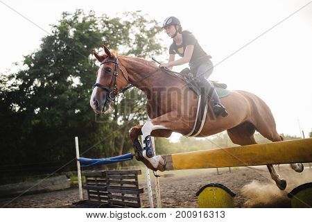 Young female jockey on her horse leaping over hurdle