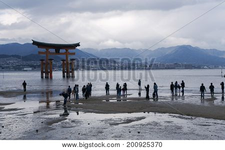 JAPAN, MIYAJIMA, APRIL, 06, 2017 - Miyajima island, the famous Itsukushima Floating Torii gate, Japan. Among the visitors of this picturesque place it is customary to leave coins in the cracks of the supports of the ritual gates and make wishes.