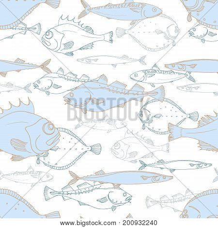 Seamless pattern of white and blue sea fish. Perch cod scomber mackerel flounder saira. Vector doodle. Elements for your nature background