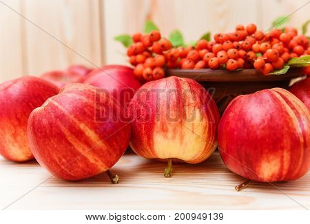 Autumnal composition from fruits.apples and rowan.wooden background.