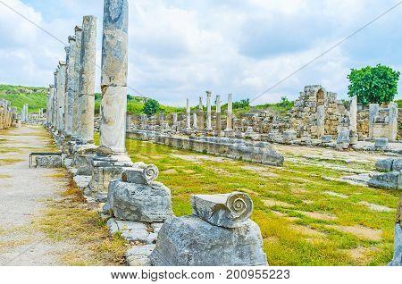 Columns In Perge