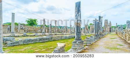 Preserved Marble Columns In Perge