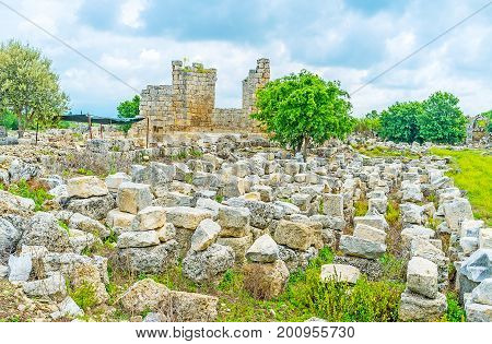 The Stone Meadow In Perge