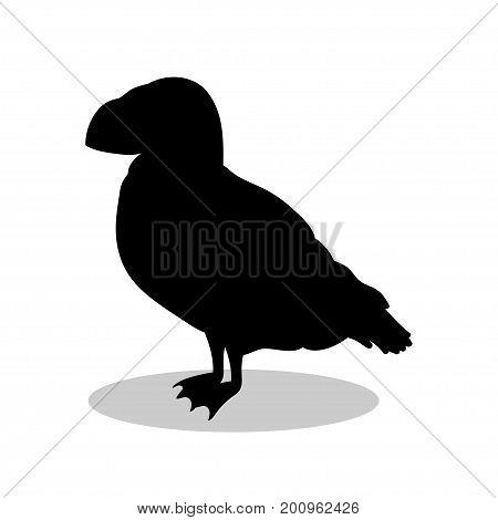 Puffin bird  black silhouette animal. Vector Illustrator.
