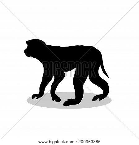 Macaque monkey primate black silhouette animal. Vector Illustrator.