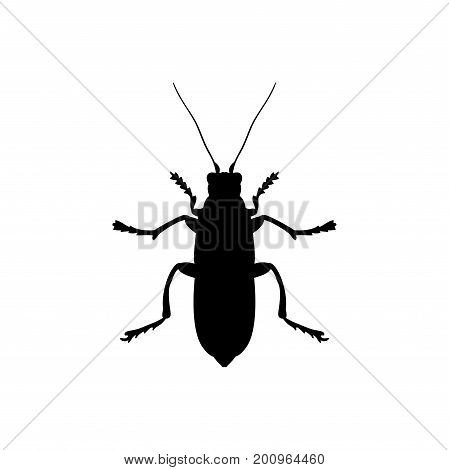 Beetle insect black silhouette animal. Vector Illustrator.