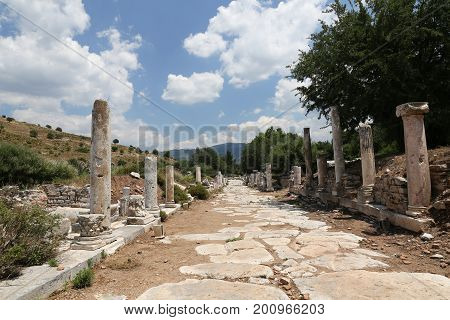 Street In State Agora Of Ephesus