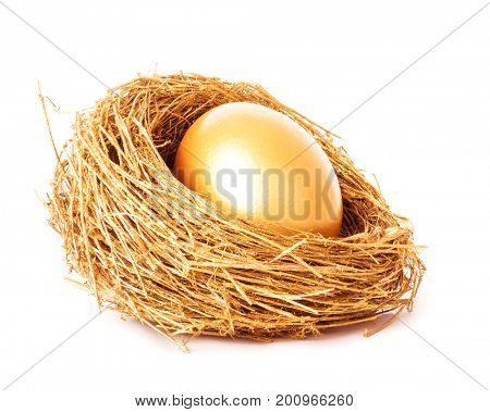 Golden egg in the gold nest. Isolated on white background