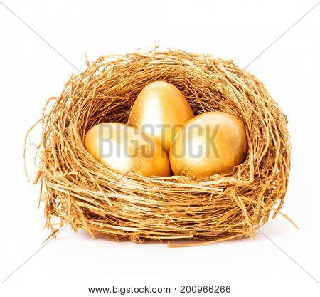 Golden eggs in the gold nest. Isolated on white background